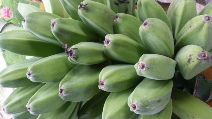 zielone banany, jedzenie na Filipinach