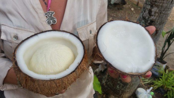 świeży kokos Filipiny jedzenie