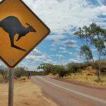 Jak znaleźć pracę w Australii?