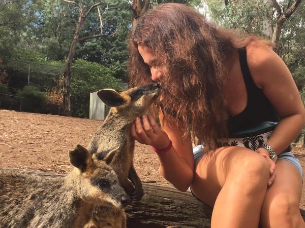 życie w Australii zoo